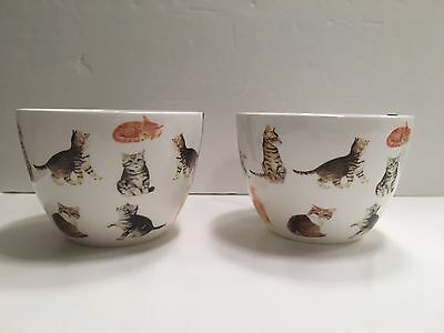 Portobello  By Inspire Set of 2 Bone China Cups Mug  Cat New