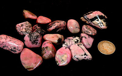 Rhodonite tumbled Stones 1/2 pound from South Africa (10222)