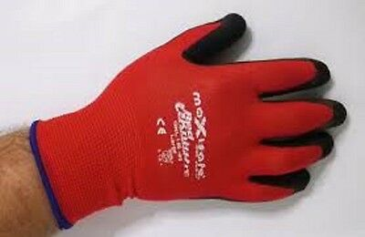 Maxisafe Red Knight Nylon Glove With Latex Palm- Gnl156