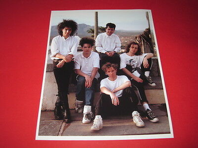 THE CURE / ROBERT SMITH  10x8 inch lab-printed glossy photo P/5087