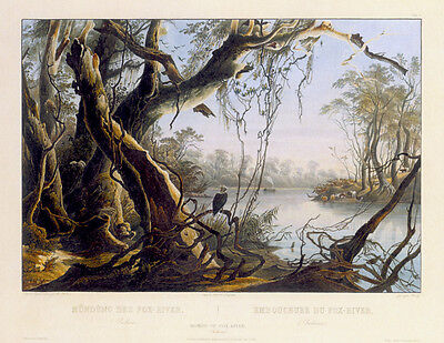 Mouth of Fox River Indiana 30x44 Karl Bodmer Native American Indian Art