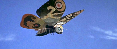 1961's MOTHRA giant flying insect color 5x10 scene