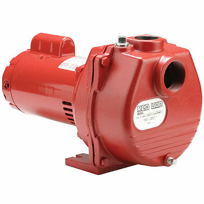 Red Lion 89 GPM 2 HP Self-Priming Cast Iron Sprinkler Pump w/ Brass Impeller ...