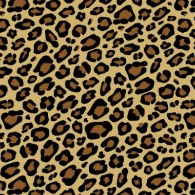 Leopard Printed Animal Print Gift Wrap Wrapping Paper Tissue Noah's Ark Party
