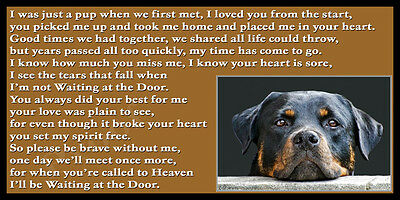 Rottweiler Dog Memorial Gift bereavement pet loss magnetic sign rainbow bridge