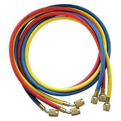 JB INDUSTRIES CCLS5-60 Manifold Hose Set,60 In,Red,Yellow,Blue