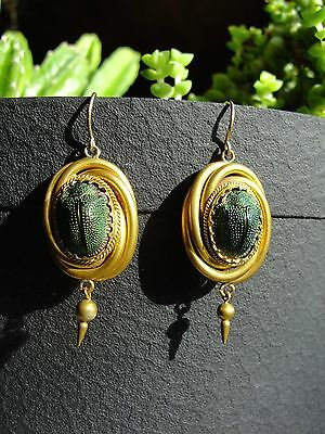Antique Victorian Real Scarab Genuine Beetle Earrings 1870's