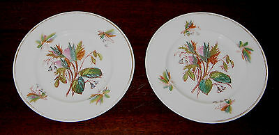 Old Paris style China  PAIR DECORATIVE  PLATES - FGC flowers + gold bands c1870?
