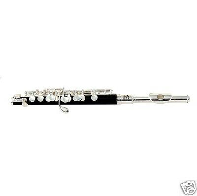 SOUNDSATION SFP-10 Silver/Black - OTTAVINO IN DO CON CUSTODIA