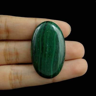 55.10Cts Amazing Green Malachite Edelstein Beautiful Superb New Loose Cabochon