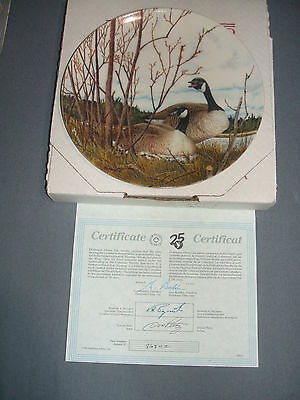 """1986 """"Nesting"""" by Donald Pentz Collectible Duck Plate #8684C MINT"""