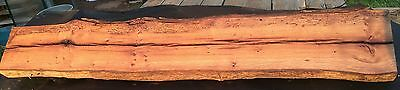 Rare Antique Reclaimed American Chestnut Slab Mantel 54""