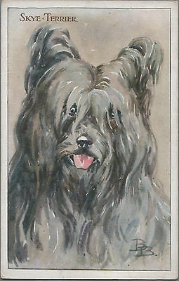 Skye Terrier Vintage  Dog Postcard Signed BB