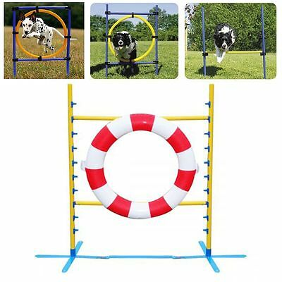 Dog Agility Tyre Jump - Dogs Training Hoop Jump Top Outdoor Exercise UK shipping