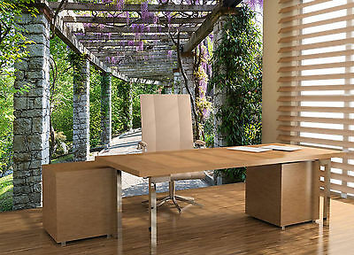 Wisteria Vine Butterfly Wall Mural Photo Wallpaper GIANT WALL DECOR PAPER POSTER