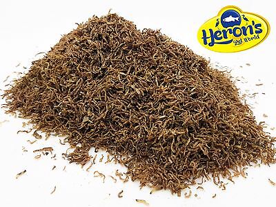 HERONS Freeze Dried Bloodworm TROPICAL FISH FOOD Cichlid Discus Goldfish