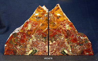 """Exquisite Petrified Wood Bookends 14 1/4"""" wide 8 1/4"""" tall 1 5/8"""" thick 11.4 lbs"""