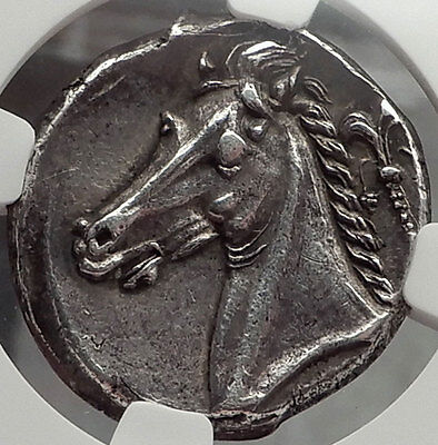 SICILY,310 Ancient Greek NGC Certified Ch XF Jenkins Plate Coin Ex Hess-Leu,1958