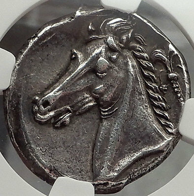 SICULO-PUNIC,Carthage,310 BC Tetradrachm: Arethusa NGC Ch XF Jenkins plate coin