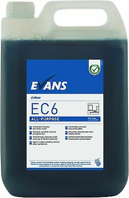 EVANS EC6 ALL PURPOSE (5L) - All Purpose Hard Surface Cleaner (BLUE) (x2)