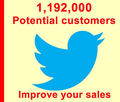 Promote eBay Store, Twitter Tweet Advertisement to 1,192,000 real people, SEO!