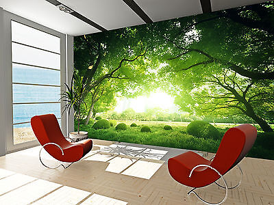 Sunny Day Wall Mural Photo Wallpaper GIANT DECOR Paper Poster Free Paste
