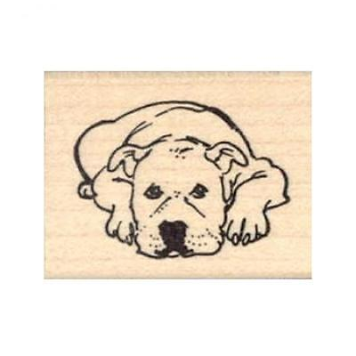 Pit Bull Lying Down Rubber Stamp - (RH21916) FREE SHIPPING