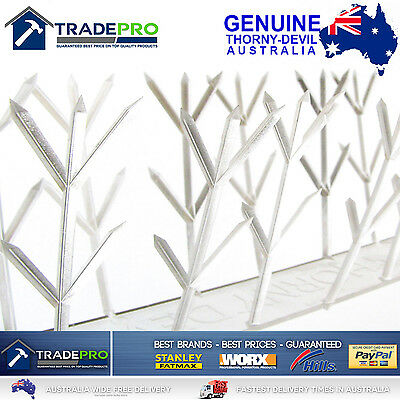 Thorny Devil® Spikes PRO Clear Polycarb 42cm Fence Animal Bird Possum Deterrent