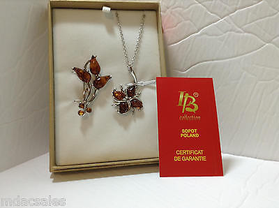 Genuine Amber Brooch and Pendant Boxed Set...Brand NEW!