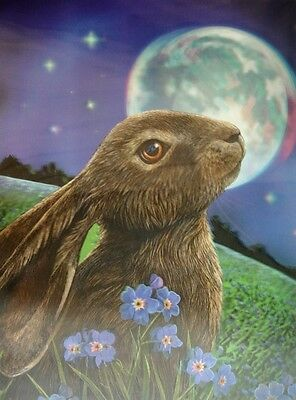 NEW * MOON GAZING HARE * LISA PARKER HARE 3d FANTASY ART PRINT PICTURE 39CM