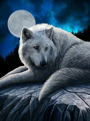 NEW * GUARDIAN OF THE NORTH * LISA PARKER WOLF 3d FANTASY ART PRINT PICTURE