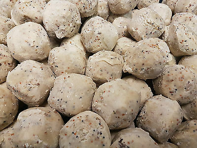 Suet To Go Insect and Seed Fat Balls Wild Bird x150 Box High Quality