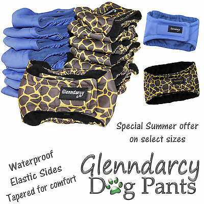 Waterproof Glenndarcy Belly Band For Male Dogs / Urine Marking / Incontinence