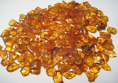 Natural Polished Chip Baltic  Holed Amber Loose Beads  18g +  Screw Clasps