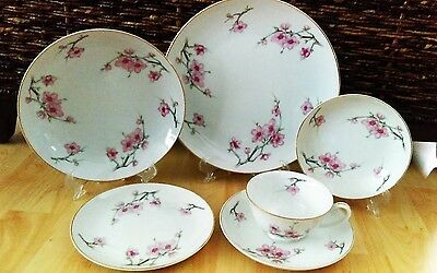 Vintage Cherry Blossom 6 Piece Place Setting by Diamond China