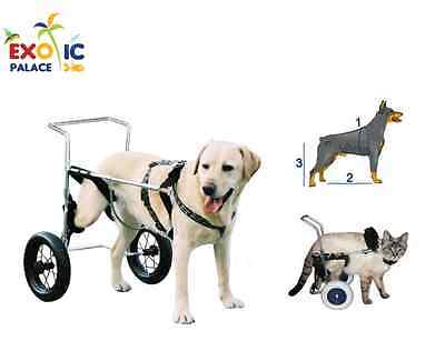 Carrello Veterinario Canis Mobile Per Cane O Gatto Disabile Handicap Ortopedico