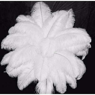 "New 10 PCS Wholesale Quality Natural OSTRICH FEATHERS ""12-14"" Inch White Color"
