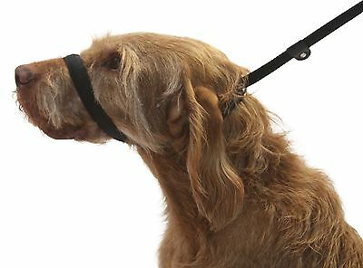 Figure of 8 Dog Lead. STOP YOUR DOG PULLING NOW. 3 leads in 1. Soft & Padded.