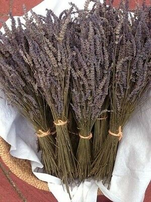 3 Bundles Beautiful Dried Lavender Great Gift for wedding,birthday & Anniversary