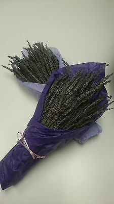 "6 Beautiful Decorated Smell Good 8""-10"" Dried Lavender"