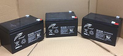 POWABYKE SAKURA ELECTRIC BIKE  BATTERY PACK RItar x 3
