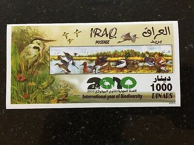 Iraq SS MNH 2010 International Year Of Biodiversity Ducks Birds
