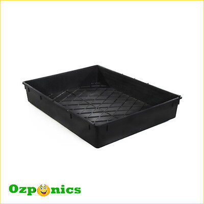 10 x Growlush High Quality Hydroponics Tray No Hole 500 x 380 x 82mm