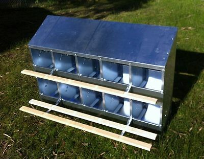 10-HOLE FREE RANGE NEST BOX for up to 50 HENS / Chickens / CHOOKS / Poultry