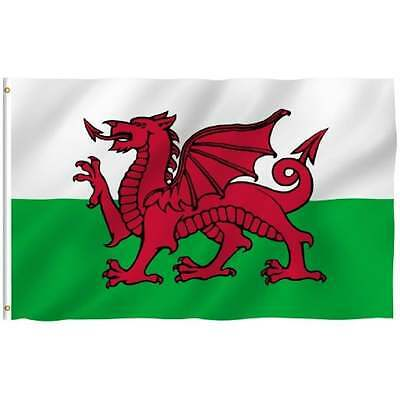 Wales Red Dragon Value Flag Pole Kit - Euro 2016