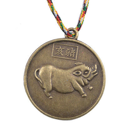 PIG CHINESE ZODIAC Charm Pendant Coin Lucky Feng Shui+Five Element Chain
