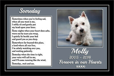 Pet Dog Memorial Gift Personalised Mounted Poem Rainbow Bridge sympathy gift