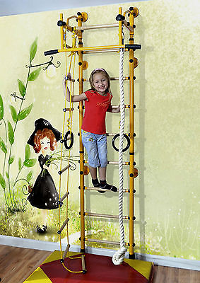 Indoor Jungle Gym, Wall Bars, Gym Wall, Home Sports Equipment, Sports Equipment