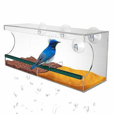 Large See Through Window Suction Bird Feeder Clear Removable Tray Drain Holes