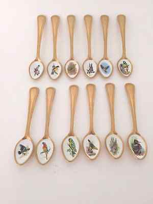 Vintage Bird spoons Stainless steel Gold plated set of 12